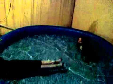 Festa na piscina.mpg