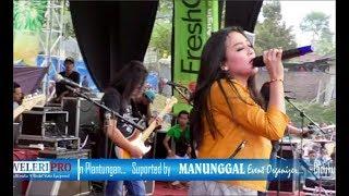 MENUNGGU KAMU -  ELSA SAFIRA MONATA live KENDAL