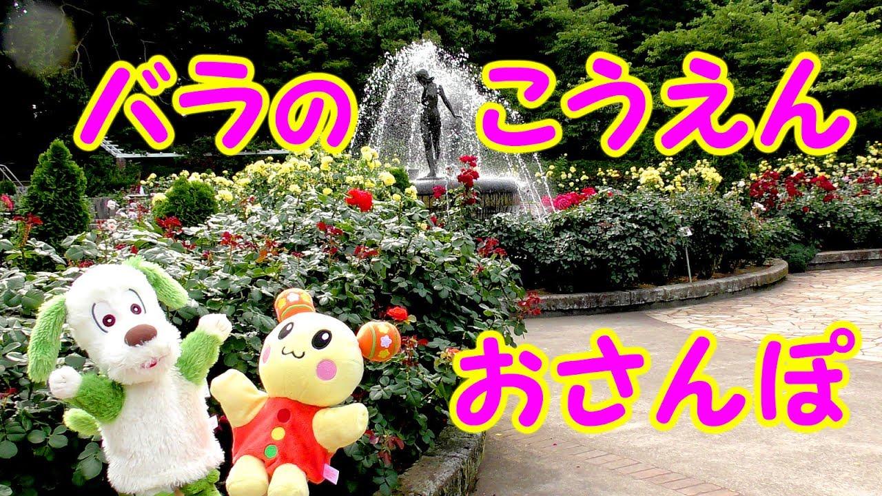 ワンワン (いないいないばあっ!)の画像 p1_23