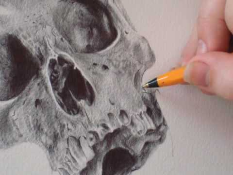 Stop Motion Drawing 2: Sugar Skull by Paul Alexander Thornton Video