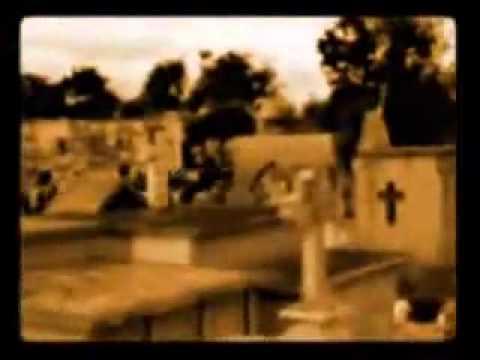 Los Fabulosos Cadillacs - Mal Bicho