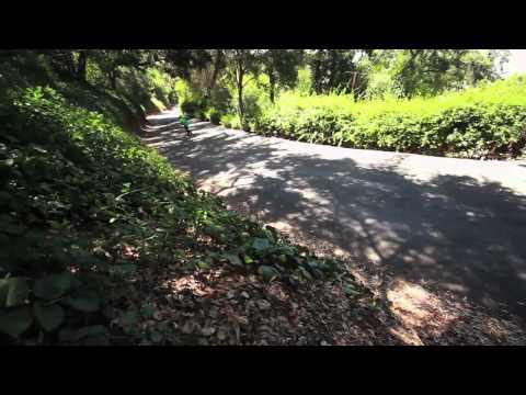 Abec11 Introducing Chance Gaul - GRN TM Longboarding