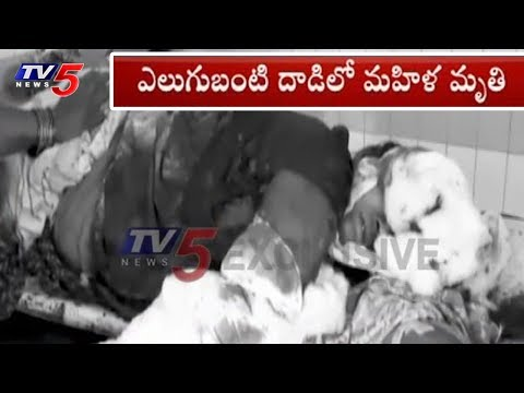 ఎలుగుబంటి భీబత్సం!! | Villagers Injured in Bear Attack in Srikakulam | TV5 News