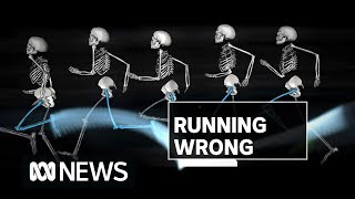 Why almost everything you thought about running is wrong | ABC News