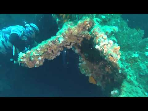 produce ship wreck - Aliwal Shoal - South Africa