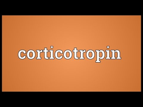 Header of corticotropin