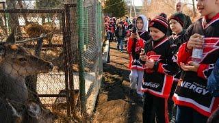 """Хоккеисты """"Авангарда""""-2007 побывали в Большереченском зоопарке"""