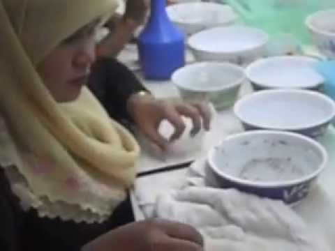 Edible Bird Nest Cleaning Process In Kuantan video