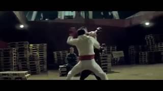Remix Việt - Những pha võ thuật Ngô Kinh