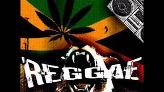 Teri Meri | Reggae Mix