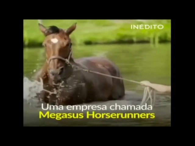 Curiosidades Papo de Graça: Nike de Cavalo.