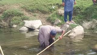 How you catch fish me and my friends catch fish in  river