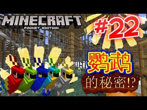 Minecraft PE超酷生存系列  【第二十二集】鹦鹉的秘密!?找了半個小時終于找到了。。。
