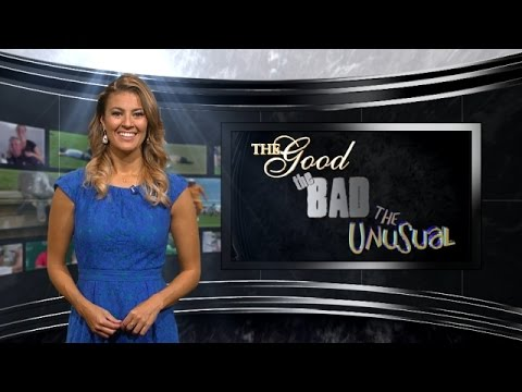 Amanda Balionis recaps all of the good, bad and unusual shots from the Wyndham Championship through the Deutsche Bank Championship. Subscribe to the channel ...