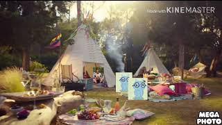 Burger King Britain's Elephant Vs King Tv Advert Whopper 2014 BK guy