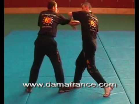 Jun Fan Jeet Kune Do Grappling 1 par Denis Vazard Image 1