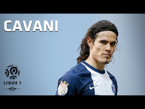 Les 16 buts d'Edinson Cavani / 2013-2014