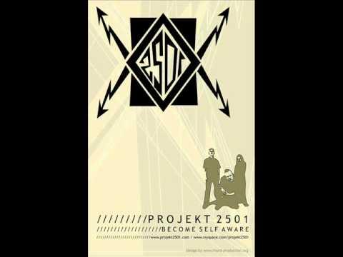 Projekt 2501 - Forsaken (VNV Nation Cover)