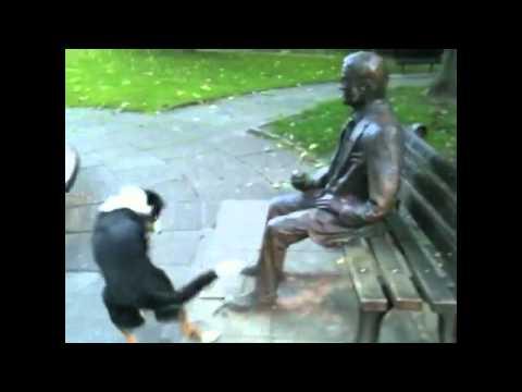 La estatua más real para un perro es...