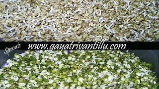 Sprouts - Molakalu - Indian Andhra Telugu Vgetarian Recipes