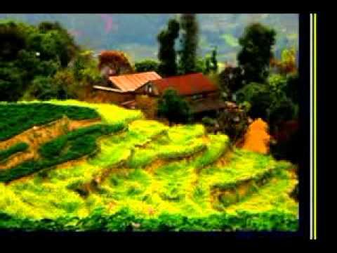 sayeun juni pauna sakincha  by Jagdish Samal and Rajina Rimal