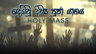 Morning Holy Mass - 29/09/2020