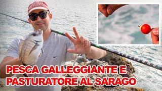 Pesca Galleggiante E Pasturatore Al Sarago