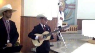 Gustavo violeiro  - Marcha Nupcial na viola Caipira