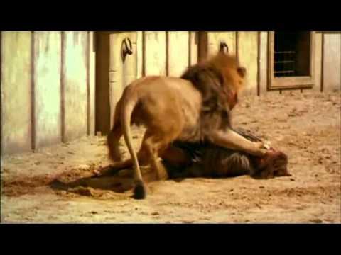 Mártires Cristãos - DVD 1 - Parte 4 de 7
