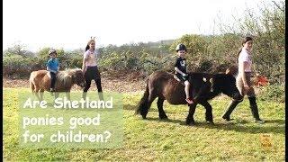 Are Shetland ponies good for children? TV Episode 230