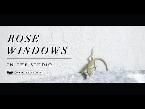 Rose Windows In The Studio