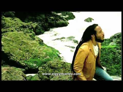 Ziggy Marley - Love is My Religion Video