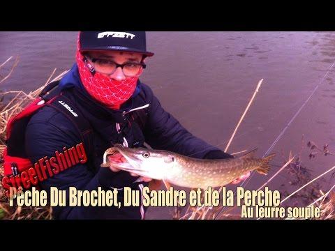 StreetFishing #25 Pêche Du Brochet, Du Sandre Et De La Perche Au Leurre Souple (Dam/Effzett)