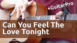 Can You Feel the Love Tonight (Go Fingerstyle cover)