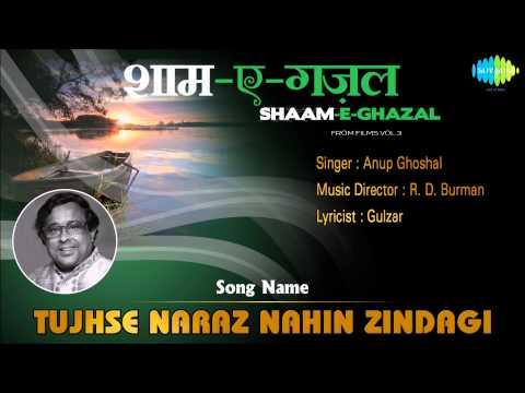Tujhse Naraz Nahin Zindagi   Shaam-E-Ghazal   Masoom   Anup...