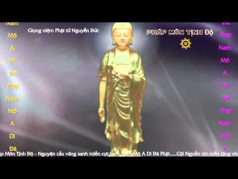 Niệm Phật và Phát Nguyện Vãng Sanh Cực Lạc