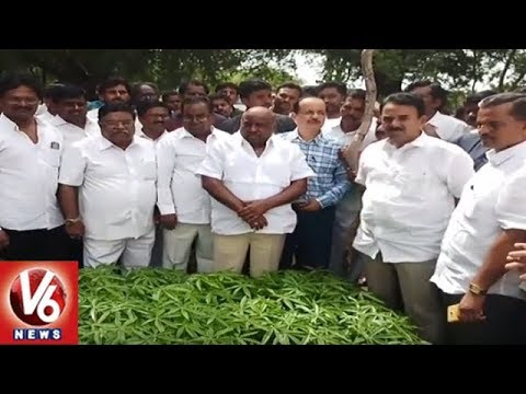 Minister Jogu Ramanna Inspects Forest Nursery In Nagarkurnool | V6 News