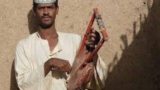 ربابة سودانية هجيج