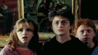 Hermione Jane Granger - Me Against The World