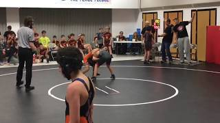 Maple vs Shepard - 100 lbs
