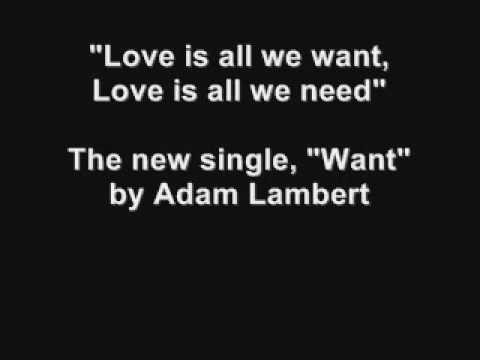 Adam Lambert - Want