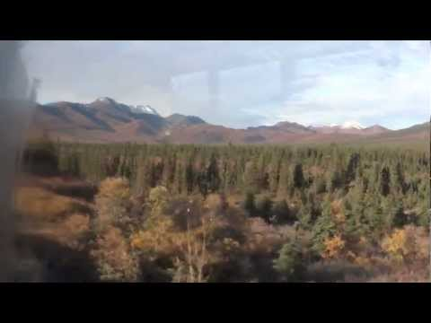 Alaska, Denali National Park, Tundra Wilderness Tour 9-8-2012