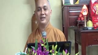 Lịch Sử Đức Phật 19: Thái Tử Tất Đạt Đa Cứu Chim Thiên Nga (phần 2)