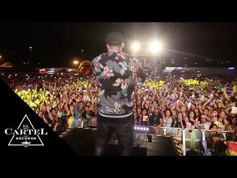 Daddy Yankee - Milan, Italia [2014]