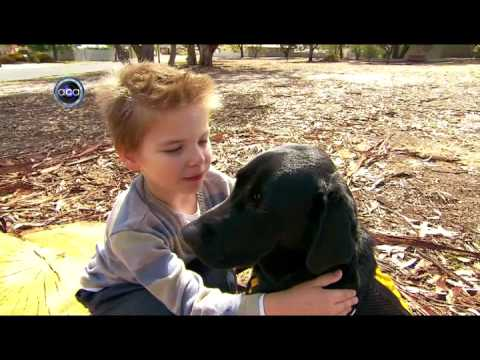 Autism Assistance Dogs - ACA Adelaide, Channel 9