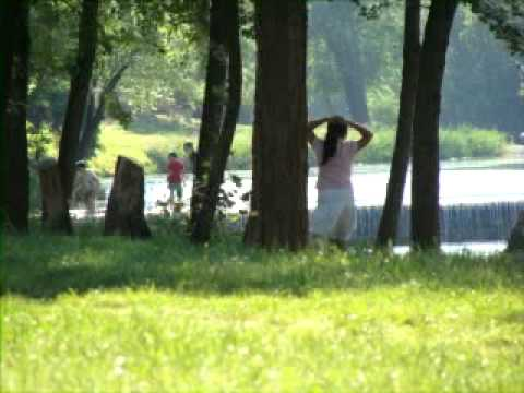 Bollywood songs violin old indian 2013 full video film Free...