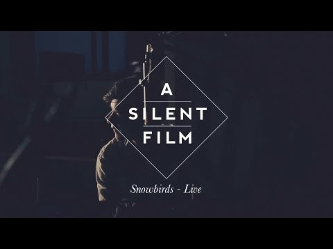 Where Snowbirds Have Flown // The Sycamore Tapes // A Silent Film