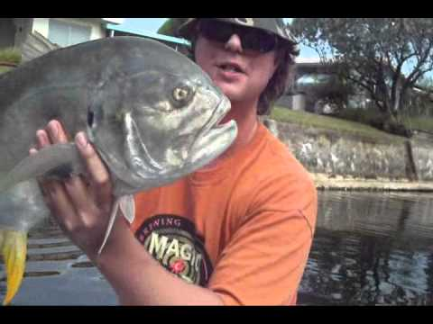 Sport fishing For Jack Crevalle fort Lauderdale - Ned's fishing Channel