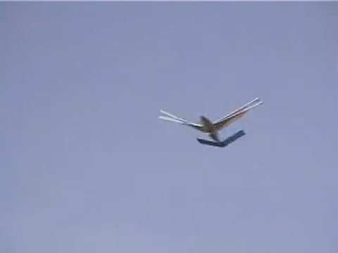 Ornithopter Experiment #1