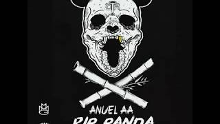 Video RIP Panda Anuel AA